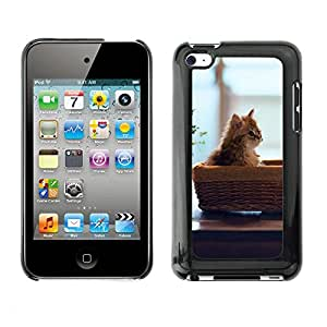 Hot Style Cell Phone PC Hard Case Cover // M00100356 kitten mood basket animals // Apple ipod Touch 4 4G 4th