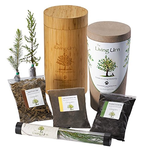 The Living Urn 100% Natural Tree Urn and Planting System for Pets Including an Evergreen Tree Seedling (Choose Between a Pine, Evergreen, and Cypress Tree) by The Living Urn
