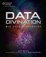Data Divination: Big Data Strategies Front Cover