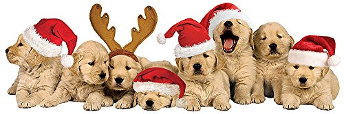 Puppy Christmas Cards (Paper House Productions STTL-0025E 3D Cardstock Stickers, Christmas Puppies)