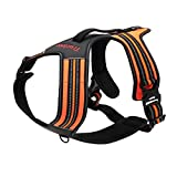 GBSELL Front Range Dog Harness Straps Reflective Outdoor Adventure Pet Vest with Handle and Two Leash Attachments (L, Orange)