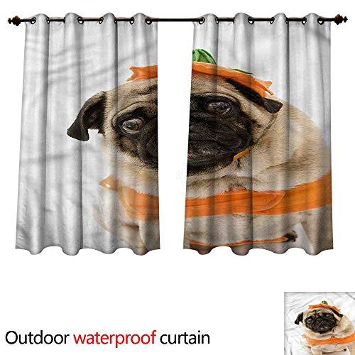 cobeDecor Pumpkin Outdoor Curtain for Patio Pug Costume Trick Treat W72 x L72(183cm x 183cm) -