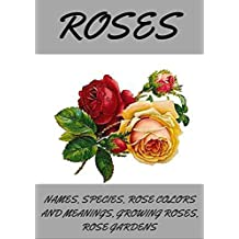 ROSES: Roses, how to grow roses, planting roses, rose spices types and names, rose colors and meanings, rose gardening.