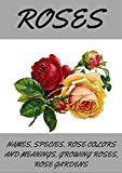 ROSES: Roses, how to grow roses, planting
