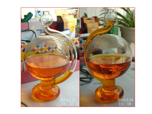 Novelty Gadget Globe Shape Glass Barometer Weather Forecast Detection w/ Water
