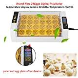 Yosoo Incubator Hatcher-24 Digital Clear Egg Turning Incubator Hatcher Automatic Temperature Control Energy-saving Egg Incubator