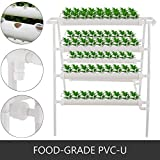 DreamJoy Hydroponic Site Grow Kit 6 Pipes