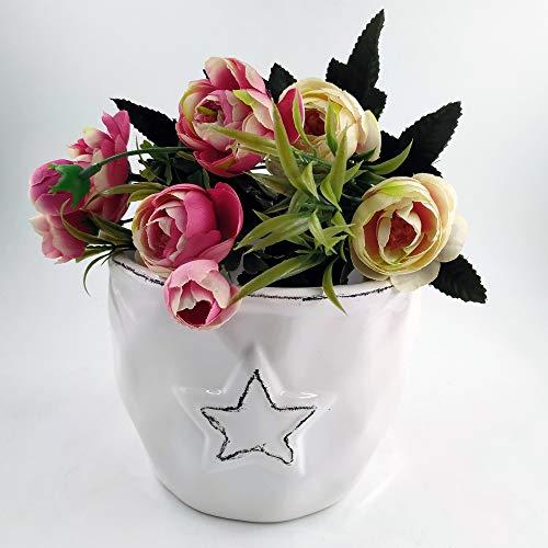 Better Way Star Design Ceramic Planter Modern Flower Pot