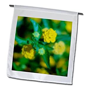 Jos Fauxtographee Floral - Yellow flowers shot close up on a bush with green leaves - 18 x 27 inch Garden Flag (fl_64784_2)