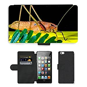 hello-mobile PU LEATHER case coque housse smartphone Flip bag Cover protection // M00136224 Saltamontes viridissima Insectos susto // Apple iPhone 5 5S 5G