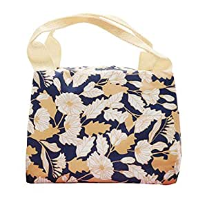 Reusable Thermal Foldable Lunch Tote Bag Cooler Bag Insulated Lunch Box Picnic Bag School Cooler Bag for Men Women Ladies Girls Children Kids Student