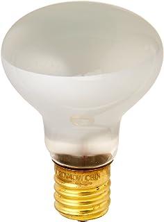 Satco S4700 120V Intermediate Base 25-Watt R14 Light Bulb Clear