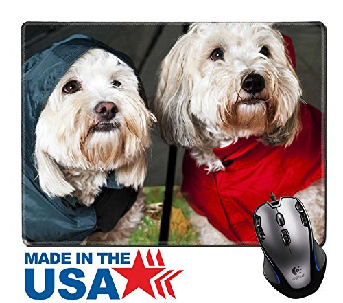 """[MSD Natural Rubber Mouse Pad/Mat with Stitched Edges 9.8"""" x 7.9"""" Two coton de tulear dogs in raincoats under umbrella IMAGE 12389864] (Dog Pair Costume Ideas)"""
