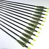 "Shiny Black TigerStreak 28"" Premium Fiberglass Hunting / Target Practice Arrows with Replaceable Screw-In Stainless Steel Field Point (1 Dozen)"