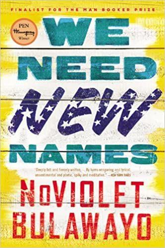 Link to the book We Need New Names by Noviolet Bulawayo - Zimbabwe books