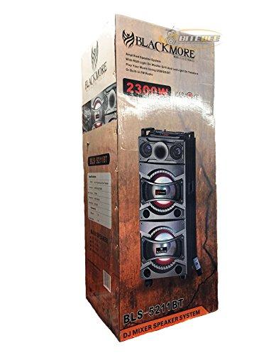 blackmore-bls-5211bt-dj-speaker-system-w-bluetooth-eq-fm-usb-sd-in