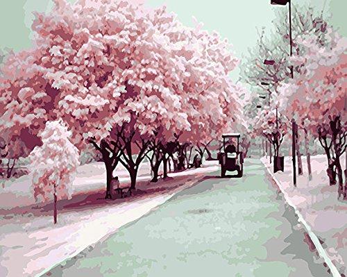 FramedPBN Paint By Number Kits Sakura Road 13.4