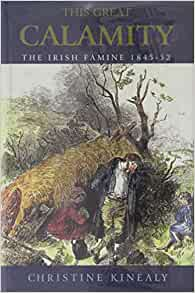 THIS GREAT CALAMITY IRISH FAMINE 1845-52 By Kinealy Christine **BRAND NEW**