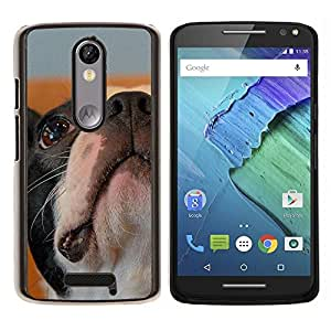 LECELL--Funda protectora / Cubierta / Piel For Motorola MOTO X3 3rd -- Boston Terrier Bulldog Francés Perro Bull --