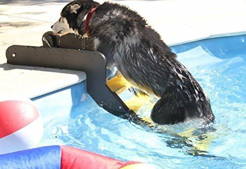 WaterDog Adventure Gear - Escalera para perro para piscina: Amazon.es: Productos para mascotas