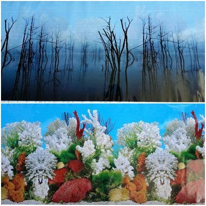 36''(L) x 19.50''(H) Double Sided Aquarium Terrarium Background Decorations by Karen Low