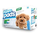 Mednet Direct 30″ x 36″ XX-Large Puppy Pads – 100 Count, My Pet Supplies
