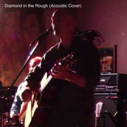Diamond in the Rough (Acoustic Cover) ()