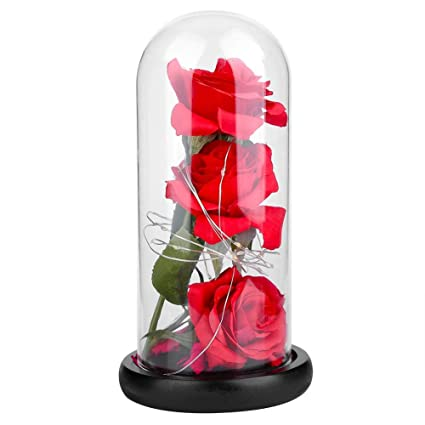 Amazoncom Beauty And The Beast 3pcs Simulation Rose Everlasting