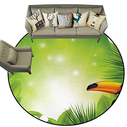 Tropical Animals,Soft Carpet Floor Mat Home Decor D54 Toucan Birds with Macro Exotic Plants with Fresh Colors Nature Design Rugs for Kitchen Floor Green ()