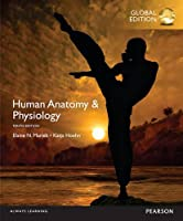 Human Anatomy & Physiology, 10th Global Edition Front Cover