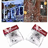 MineDecor Halloween Decorations Spider Web with Spiders Fake Halloween Costume Party Decor Props 500 sqft Web Webbing Stretchers for Tree Swing Outdoor Indoor Yard Garden (2 Pack White)