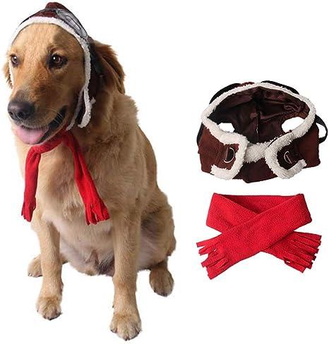Coppthinktu Disfraz de piloto de Perro Halloween Mascota Aviador ...
