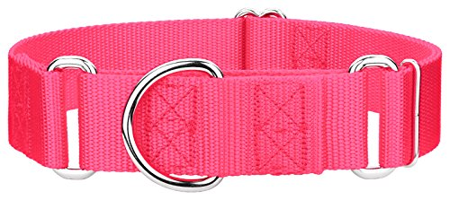 Country Brook Design - 1 1/2 Inch Martingale Heavyduty Nylon Dog Collar (Large, 1 1/2 Inch Wide, Hot Pink)