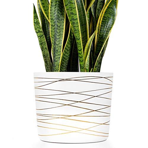 12 Inch Ceramic Pot – Matte White with Metallic Gold Stripes