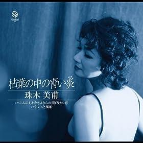 No Aidadake No Koi Original Karaoke: Miho Tamaki: MP3 Downloads