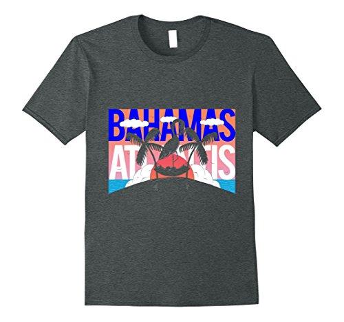 Mens Atlantis Bahamas Palm Trees Tropical Sunset T shirt XL Dark - Places Sunniest