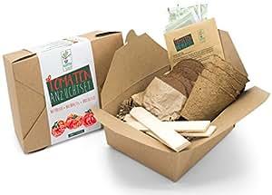 ricas Semillas Tomates Kit para hidroponía–Cultivo de errores matorrales de tomates, cóctel de tomates con respetuoso con el medio abbaubaren, Plantación de coco pastillas, instrucciones y madera de baquetas