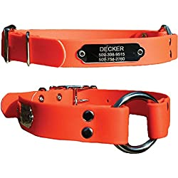 GoTags Sporting Dog Collar with Stainless Steel Personalized Nameplate. Hunting Dog Collar. 100% Waterproof. No Smell.