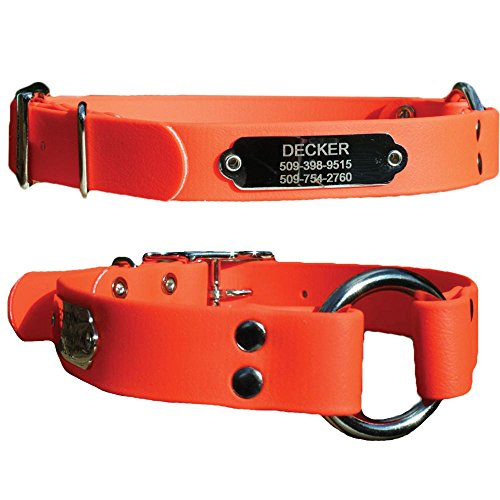 GoTags Sporting Dog Collar with Personalized Nameplate in Stainless Steel, Waterproof Orange Hunting Dog Collar Resistant to Dirt, Oils and Moisture, Odor-Proof