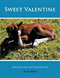 Sweet Valentine, Shelly Willis, 147725336X