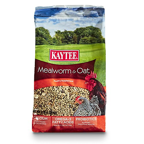 Kaytee Mealworms and Oats Treat, 3 Pound