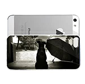 iPhone 5&5S cover case Animals Dog Waiting Rain