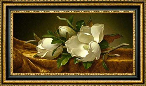 Magnolias on Gold Velvet Cloth by Martin Johnson Heade - 13.25