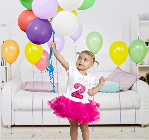 Silver Lilly Baby Girls Birthday Outfit Cute 2 Piece