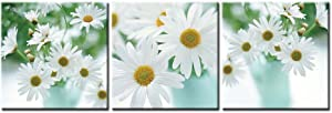 So Crazy Art- White Daisy Wall Art Decor Daisies Flower in Vase Canvas Pictures Artwork 3 Panel Plant Painting Prints for Home Living Dining Room Kitchen