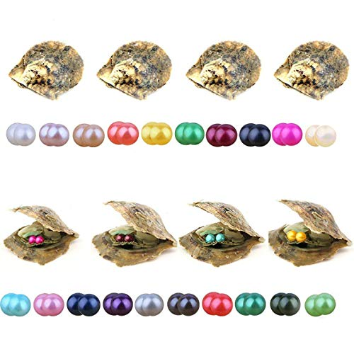 Akoya Twin Pearl Oysters, Wholesale Lots Saltwater Cultured Love Wish Pearl Oyster with Twin 7-8mm Round Pearls Inside(10 PCS/lot)