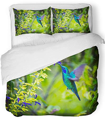 Hummingbird Feeder Gold (Emvency 3 Piece Duvet Cover Set Breathable Brushed Microfiber Fabric The Incredibly Beautiful Green Violet Eared Hummingbird in Central Mountains Bedding Set with 2 Pillow Covers Twin Size)