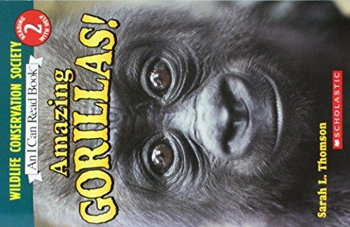Amazing Gorillas! [Taschenbuch] by Sarah L. Thomson