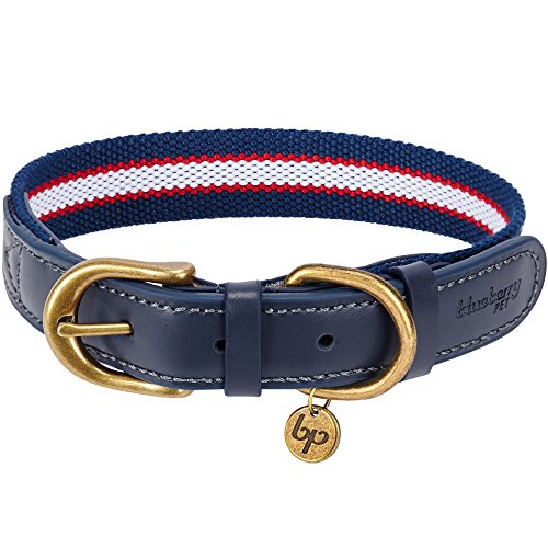Blueberry Pet 8 Colors Polyester Fabric Webbing and Soft Genuine Leather Dog Collar in Navy White and Red, Large, Neck 18