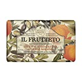 Nesti Dante Il Frutteto Italian Moisturizing and Nourishing Bar Soap, Olive Oil and Tangerine, 250 Grams